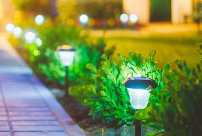 Skab liv i haven med bedlamper